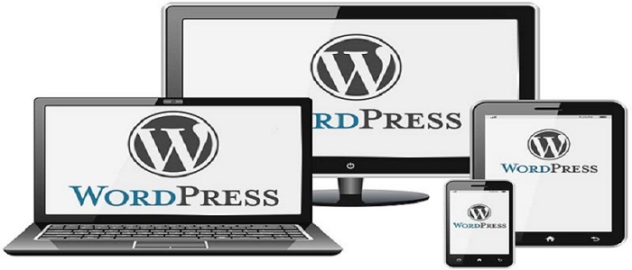 Wordpress Web Developers in Pretoria